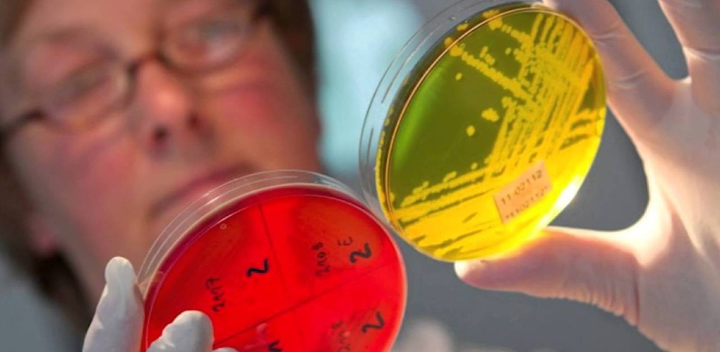 Эффективные средства для борьбы с кишечной инфекцией